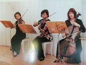 Прекрасное трио музыкантов украшало церемонию бракосочетания. Первая скрипка Елена Тюхтина, альт Оле
