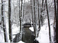 река Саровка